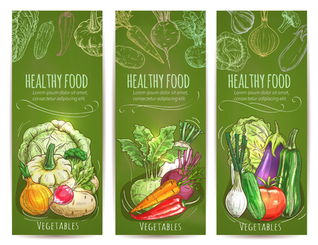 napa: Healthy food banners set. Chalk sketch vegetables cabbage, squash and onion, radish and, kohlrabi, beet, carrot, chili and bell pepper. Leek, cucumber, tomato and eggplant, zucchini and chinese cabbage napa vector vegetables on green chalkboard Illustration
