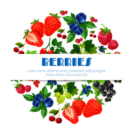 black circle: Berries poster of fresh sweet and juicy strawberry, and cherry, raspberry, blackberry and blueberry, black currant or red currant, gooseberry and briar. Forest and garden fruity berry harvest for fruit jam, market or store design