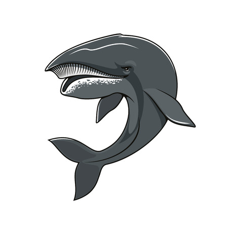 Whale vector icon for mascot symbol. Isolated sea or ocean animal cachalot of toothed big whale mammal fish with massive big head for sport team emblem, fishing sign or fishery industry badge Stock Vector - 70051894