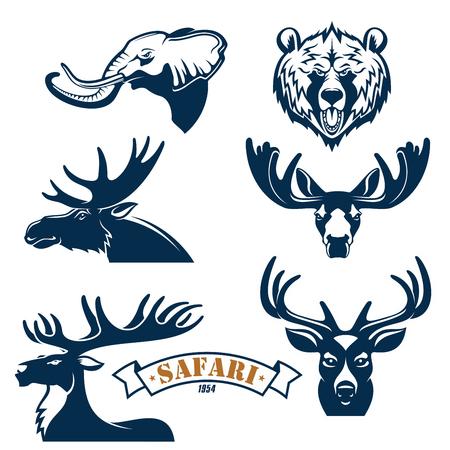Caza emblemas del club y de conjunto de iconos. Safari insignias caza de aventuras con animales jefes de iconos aislados de elefante, el oso pardo, el alce o asta de ciervo y los renos. vectoriales aislado signos, cinta para el deporte cazador de la sabana africana