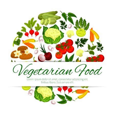 Healthy vegetable, vegetarian food banner. Zucchini or courgette, summer squash and radish, pepper and potato, onion and tomato, laurel and sorrel leaf spices, flower cabbage and kohlrabi.Vegan restaurant or shop, farm harvest theme