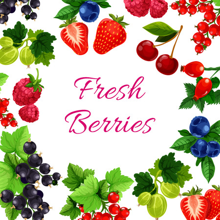 Berry with leaf poster or fruit food sign. Blueberry or bilberry, hurtleberry or huckleberry, whortleberry and blaeberry, currant and cherry, strawberry and gooseberry, raspberries. Agriculture or harvest, farming or vegan theme