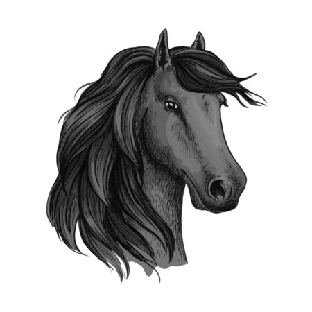 filly: Head sketch of horse mustang or stallion. Dapple gray broodmare or mare, foal or filly with wavy mane, horsey domestic marish. May be used for equestrian racehorse mascot or equine sport club, hippodrome and wildlife or feral animal theme