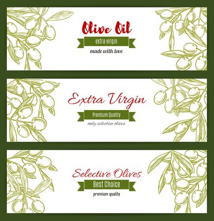 tree farming: Olive tree branch with leaf and berry sketch. Ancient greek or italian mediterranean trees harvest product. Plant twig or stem. Vegetarian or vegan nutrition, health and farming theme, grocery shop and market sign