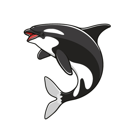 Orca or killer whale, grampus fish symbol. Marine or nautical mammal, big underwater animal and creature with teeth jumping over, swimming predator. Sea or ocean life, oceanarium or dolphinarium logo, nature theme