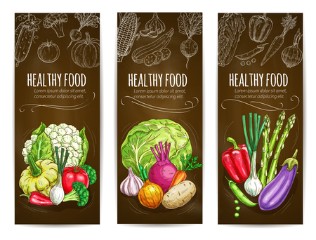 potato plant: Healthy food vegetables banners. Chalk sketch vegetables cauliflower, squash, bell and chili pepper, tomato and leek, broccoli cabbage, onion and potato, garlic, beet and carrot, asparagus, eggplant and green peas. Vector vegetables chalkboard