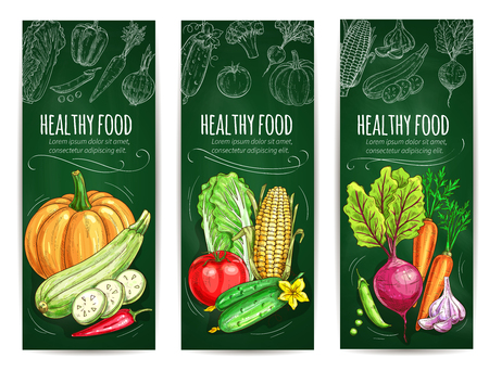 fresh vegetable: Vegetable and healthy food blackboard banner set. Fresh tomato, carrot, pepper, chinese cabbage, zucchini, corn, pumpkin, garlic, pea, beet vegetable chalk sketches on green chalkboard