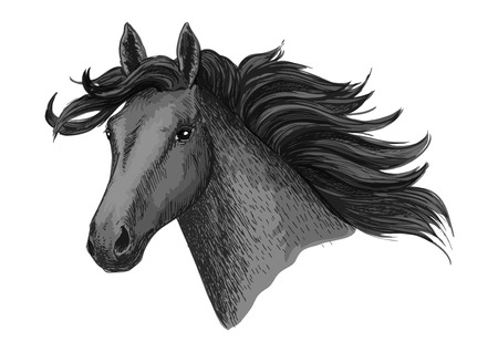 foal: Horse head. Vector symbol of mustang or mare with waving mane for horse races or racing. Stallion sketch for equine animal riding contest or exhibition, equestrian horserace sport club Illustration