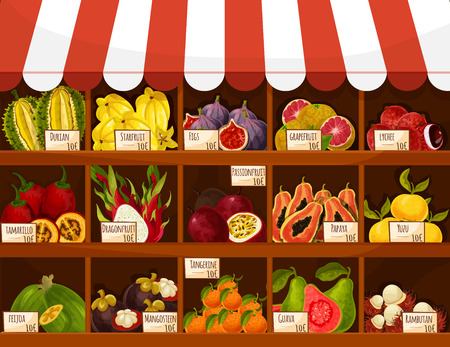 Fruit market or fair stand. Exotic tropical fruits carambola, figs, grapefruit and lichee, tamarillo and durian, dragonfruit and passionfruit. Vector papaya, yuzu and feijoa, mangosteen, tangerine, guava and rambutan. Shop or store product display