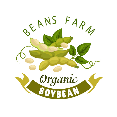 soy sauce: Soybean vector poster. Organic farm harvest of legume beans or soya bean pods with leaves and seeds. Vegetarian or vegan vitamin healthy nutrition food and cuisine. Plant Ingredient for soy sauce, milk, meat Illustration