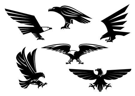 Set di icone di uccello. Emblema di vettore isolato aquila araldica o falco. Simbolo falco predatorio gotico o imperiale con ali aperte e pugnali affilate. Aquila o griffin segno di araldica per la mascotte della squadra sportiva, scudo militare, distintivo di sicurezza Vettoriali
