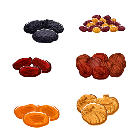 Vector icons of dried fruits. Isolated raisins of grape, dates and juicy exotic figs, apricots, plums and black prunes. Vegetarian or vegan raw food nutrition or sweets and dessert snacks or appetizers or culinary ingredients