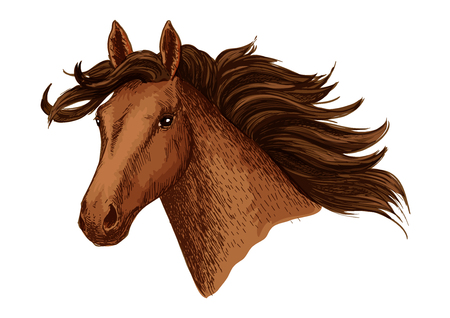 Arabian brown horse. Vector mustang stallion head. Symbol for horse races or racing sport. Wild mare with wavy mane for equestrian horserace club, equine animal riding contest or exhibition