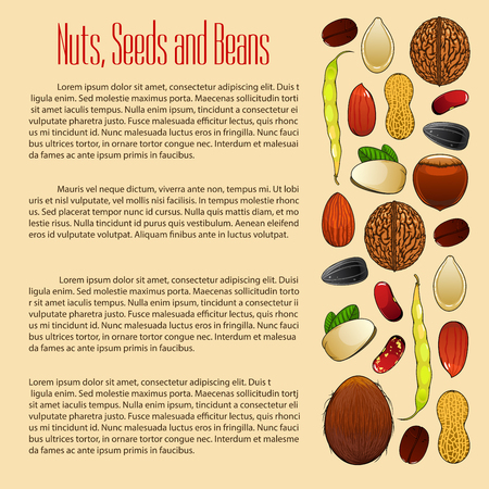 nutshell: Nuts poster with grain, plant seeds and beans of almond and pistachio kernels, wheat, oat or rye ears cereals coconut, peanut and cashew, hazelnut, walnut, sunflower seed, coffee bean and legume or pea pod. Vegan or vegetarian vector nutrition food