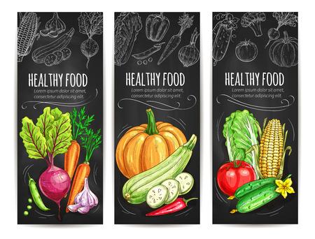repollo: Verduras bosquejo conjunto de banners. Vegetariana menú de comida sana en la pizarra. Vector de verduras de remolacha y zanahoria, ajo, guisantes y calabaza, el calabacín y el ají, repollo, pepino, tomate, maíz