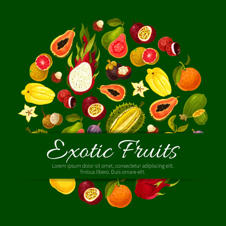 Fruit poster of vector exotic fruits tropical fresh mango, carambola and dragon fruit or pitaya, durian and mangosteen, grapefruit or red orange, passion fruit maracuya and feijoa, guava and juicy longan with figs and rambutan