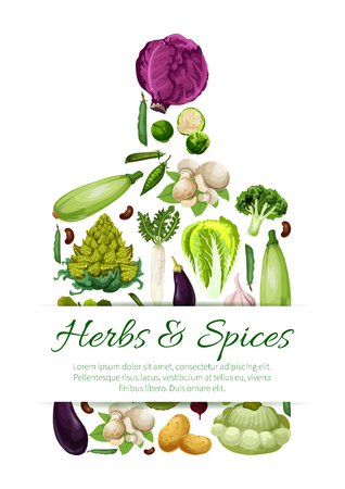Vegetables banners set in shape of cutting board with kohlrabi, arugula and romanesco broccoli, green pea or bean, beet, potato and squash zucchini or patisony, eggplant and chinese or red cabbage and champignons. Vector organic fresh farm veggies