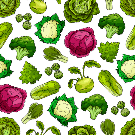 brassica: Vector vegetarian or vegan leafy veggies