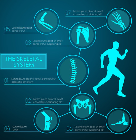Infographique médicale du système squelettique humain. Tableau d'anatomie avec la jambe, la main, le pied, le genou, la colonne vertébrale, le bassin, les épaules, les os du coude et les articulations du squelette humain avec la mise en page de texte. Médecine, la conception de l'éducation Banque d'images - 71565674
