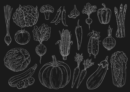 Vegetables chalk sketch icons