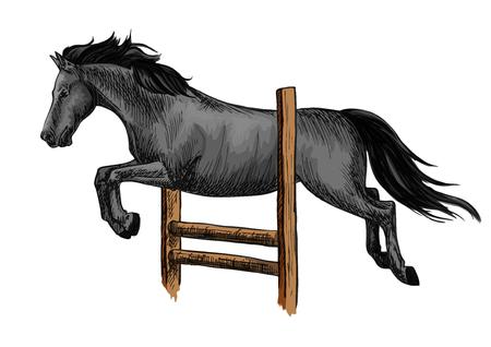 jumping fence: Negro Mustang de carreras semental y saltar la barrera.