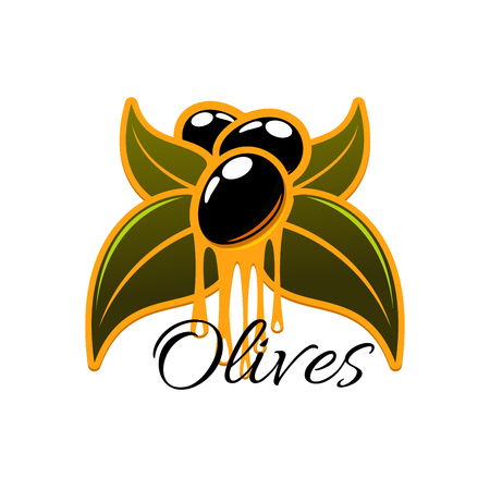 oil crops: Olive oil dripping from fresh olives. Vector icon olive tree branch with green leaves and black ripe olive fruits. Isolated emblem or symbol for olive oil bottle label, vegetarian vegetable food, salad dressing or olive-pomace sauce Illustration
