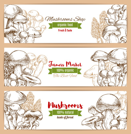 Mushrooms banners of sketched edible mushrooms. Ilustrace