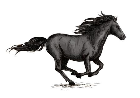 symbol sport: Pferderennen auf Rennen. Wilde schwarze Rennpferd Mustang schnell galoppieren. Horserace Sport Vektor-Symbol. Equine Stute Rennen in Freiheit Illustration