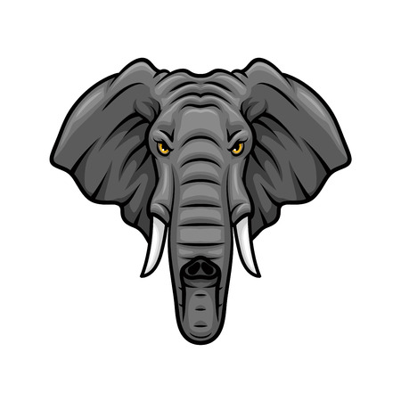 Elefante icono del vector de la mascota. Jefe de África o de elefante indio o animal mamut con los colmillos y el tronco. diseño del emblema aislado por un equipo de deporte, club de caza cubo safari o signo tatuaje