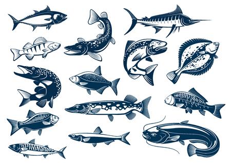 Pesce di pesce tonno, luccio e marlin, persico, orata, salmone e passera, spettacolo di carpe e di sgombro, pesce gatto o pesce gatto. Pesci simboli blu impostato per ristorante di pesce, club di pesca Archivio Fotografico - 72313395