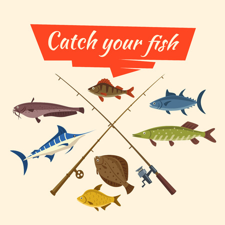 flounder: Fishing catch of fish sheatfish or catfish, marlin and perch, pike and flounder or salmon, tuna and carp, fisherman rods or fish-rods and fisher tackles baits and floats Illustration
