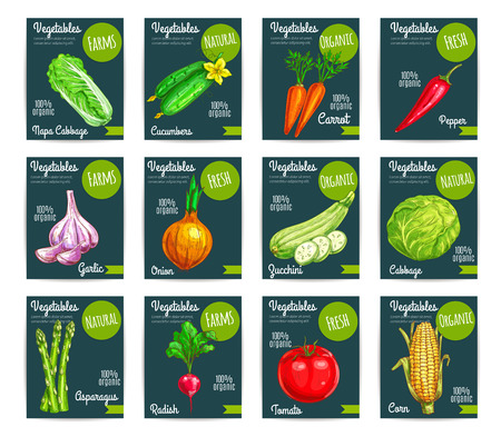 napa: Vegetables tags and veggies price labels set price labels for chili pepper, chinese cabbage napa and cucumber, carrot, garlic and onion, squash zucchini and corn, asparagus or radish and tomato