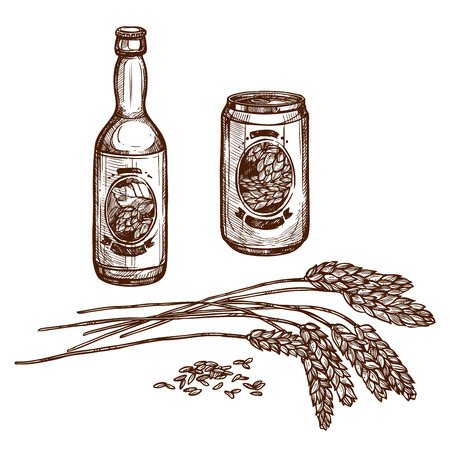 Beer and malt sketch of draught beer bottle and lager beverage in can, isolated beer brewery ingredient hop or wheat or barley grain ears and alcohol drink of ale pint for beer bar or pub Illustration