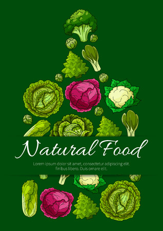 Cutting board with various types of cabbage vegetable. Broccoli, chinese cabbage, cauliflower, brussel sprouts, bok choy and romanesco cauliflower with caption Natural Food and copy space. Food design