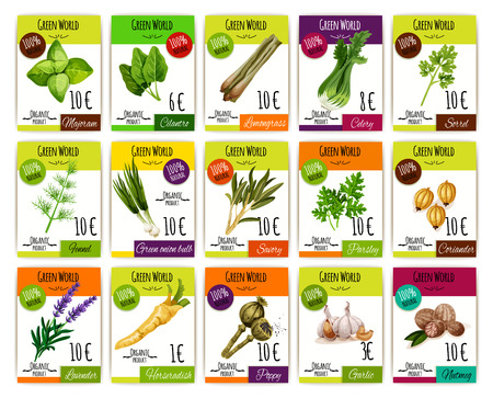 cilantro: Price labels vector set for herbs, spices of marjoram, cilantro or lemongrass and celery, sorrel or fennel, onion, parsley and coriander, lavender or horseradish, poppy or garlic and nutmeg