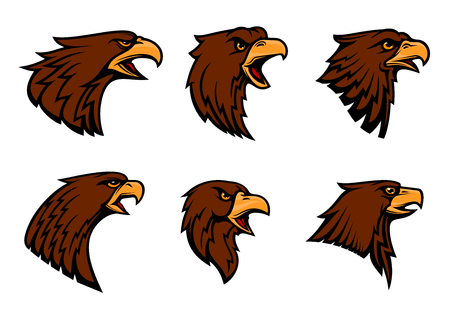 Hawk vector icons for sport team mascot emblem or blazon. Isolated badge of harsh eagle griffin or vulture bird symbol with beak for heraldry, military crest or coat of arms