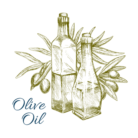 food ingredient: Olive oil of green olives vector sketch and olive-tree branch with bottle. Bunch of fresh fruits for vegetarian food seasoning product package or vegetable salad flavoring ingredient