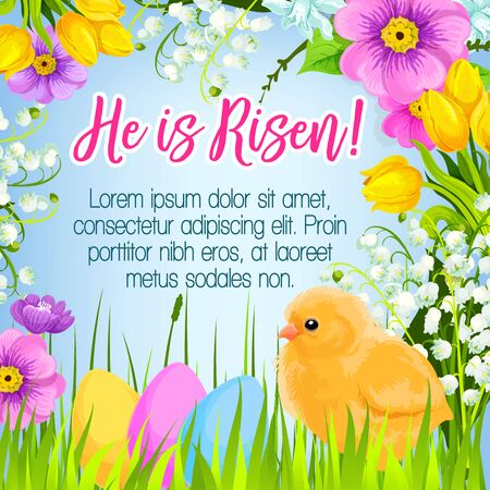 passover and easter chick: Easter poster and He is Risen design for paschal greetings. Vector Easter eggs and chick in bunch of spring flowers lily, crocuses, daffodils and tulips for Holy Sunday religion holiday