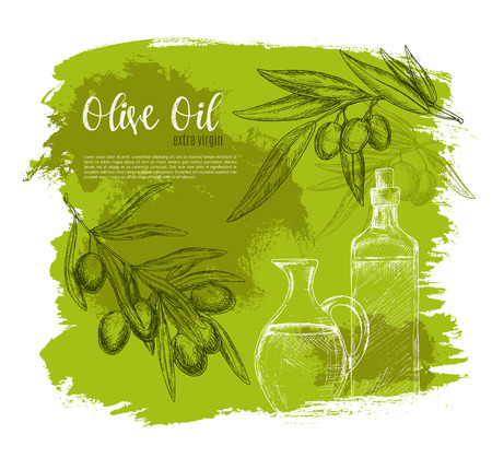 food ingredient: Olive oil sketch vector poster of green olives and branch with oil bottle and jug. Design of olives fruits bunch for vegetarian food salad flavoring ingredient or seasoning product package