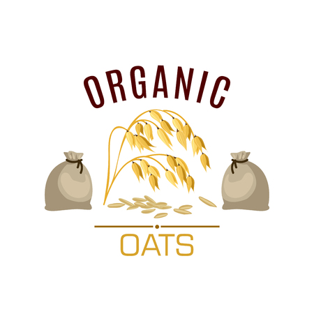food ingredient: Oats vector icon. Cereal seed grass plant of oats ear with leaves and flour or grain sacks. Design for diet nutrition food, oaten porridge or oatmeal ingredient for grocery store, market or package