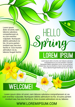 crocus: Vector green floral poster for Hello Spring design Illustration