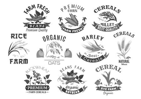 Grain and cereal product farm market vector icons Çizim