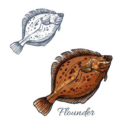 Flounder flatfish sketch for seafood design Illustration