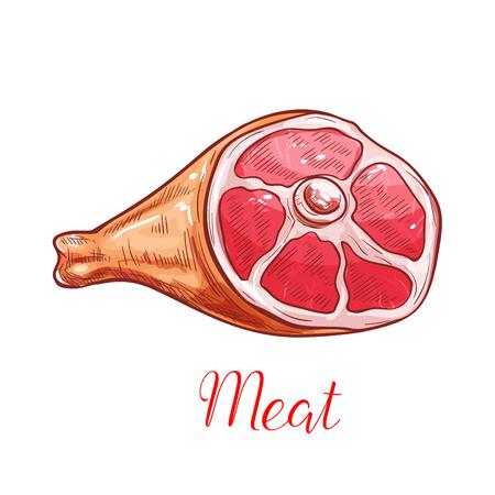 햄 또는 돼지 다리와 고기 격리 스케치