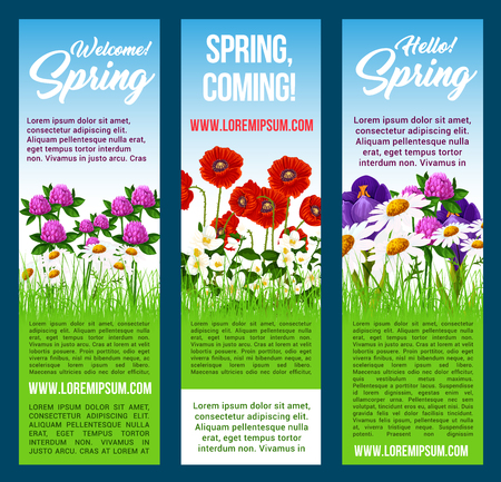 Spring flowers vector banners. Floral design for Hello and Welcome Spring holiday greetings. Green grass field of springtime blooming poppy, clover flowers, blue crocuses and chamomile daisy blossoms