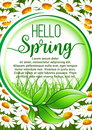 Hello Spring floral frame border. Green leaf frame with spring grass and blooming daisy flowers field on background. Springtime cartoon poster or greeting card design Illustration
