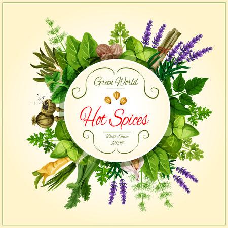 식품 디자인을위한 향신료와 잎 야채 포스터 일러스트