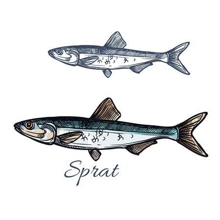 Icone di pesce spratto isolato icona schizzo