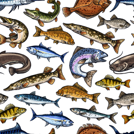 Fish sketch vector seamless pattern Illustration