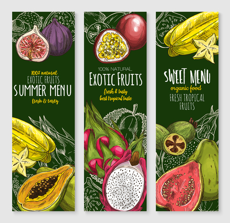 Vector banners set of exotic tropical fresh fruits. Illustration